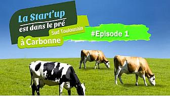 #StartUpDansLePre : Episode1 - des ´Pitchs' à la ´Foire aux Bestiaux'